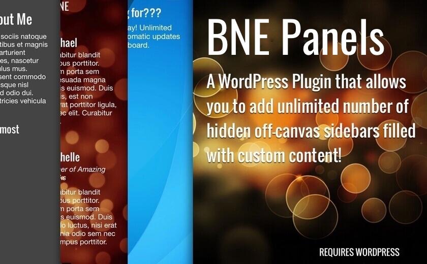BNE Panels